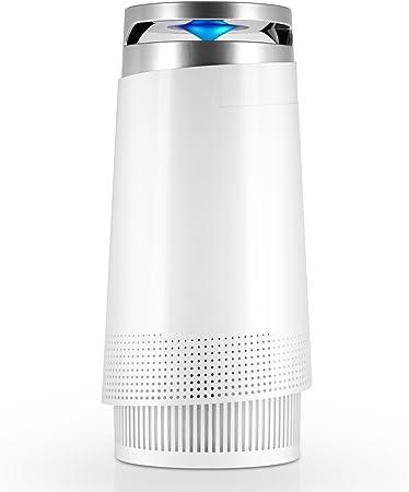 Tenergy Renair Purificador de aire, filtro HEPA verdadero ...