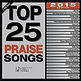 Top 25 Praise Songs 2015 [2 CD]
