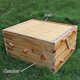 Auto Flow Beehive 7pcs Flow Frame Super Box Free Flow Frame (Super Box 7pcs Flow Frame)