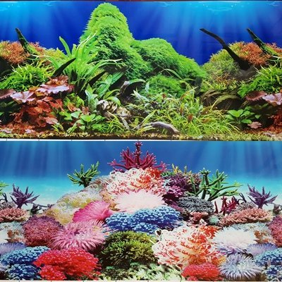 Karen Low NEW!! 19 Inch Height Double Sided Aquarium Background Green Plants And Coral Decorations (48''(L) x 19''(H)) by Karen Low