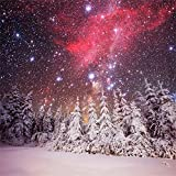 AOFOTO 10X10ft Beautiful Snow Landscape Backdrop Starry Winter Night Snow Covered Pine Trees Forest Snowfield Snowflake Vinyl Background for Photography Christmas New Year Celebration Photo Booth Prop
