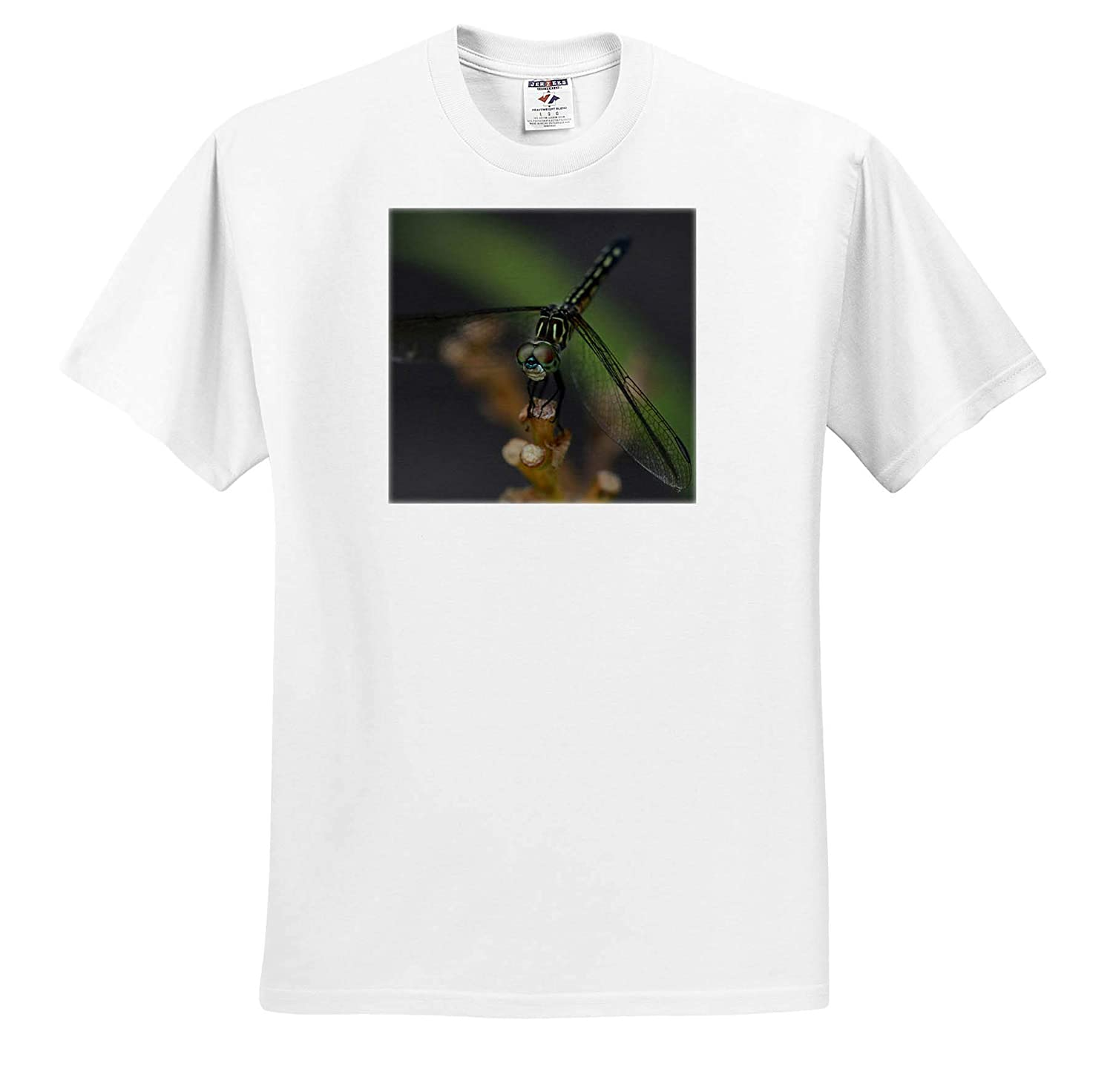 3dRose Stamp City - Adult T-Shirt XL Insects ts/_319060 Macro Photograph of a Common sanddragon Holding on to a Stick