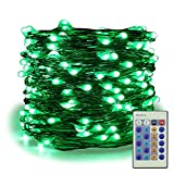 ER CHEN Dimmable LED String Lights Plug In, 99ft 300 LED Waterproof Green Color Fairy Lights with Remote, Indoor/Outdoor Copper Wire Christmas Decorative Lights for Bedroom, Patio, Garden, Yard, Party