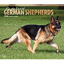 For the Love of German Shepherds 2018 14 x 12 Inch Monthly Deluxe Wall Calendar with Foil Stamped Cover, Animal Dog Breeds (English, French and Spanish Edition)