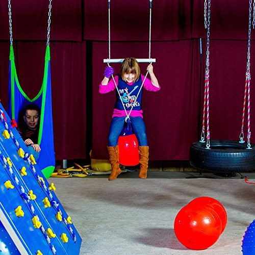Fun and Function Buoy Ball Swing & Trapeze – Supports Kids With ADHD, Autism and Sensory Processing Disorder, Ages 4+