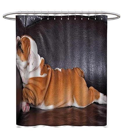 English Bulldog Shower Curtains Sets Bathroom Puppy Resting On A Sofa Funny Animal Photography Cute Canine