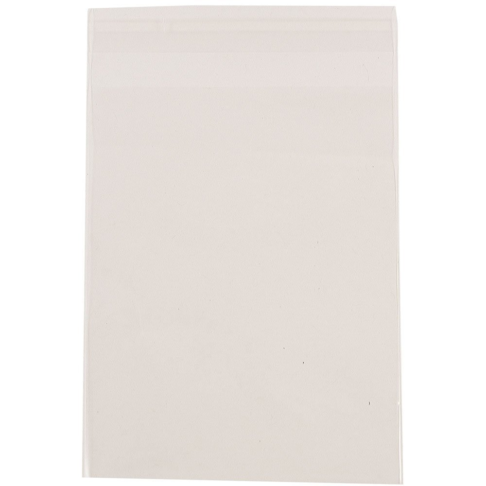 JAM Paper Cello Sleeves Envelope with Self Adhesive Closure - 8 15/16'' x 11 1/4'' - Clear - 1000/carton