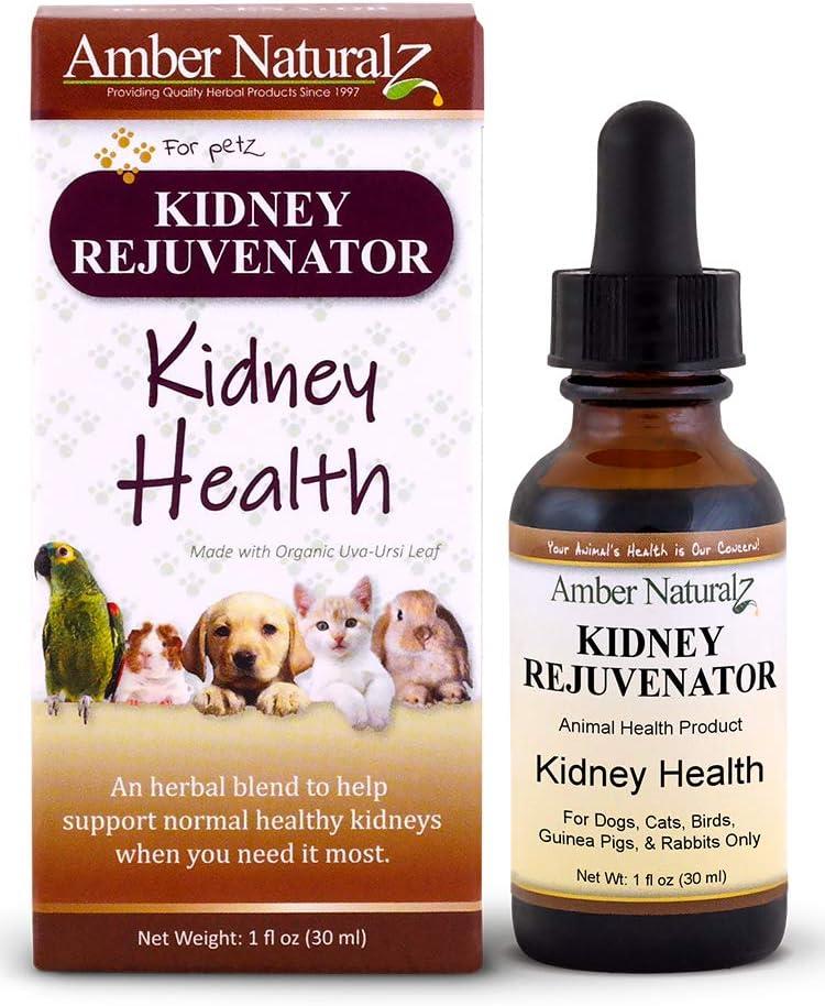 AMBER NATURALZ – Kidney REJUVENATOR – Kidney Health – for Petz – 1 Ounce