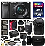 Sony Alpha a6000 24.3 MP Interchangeable Mirrorless Lens Camera with 16-50mm Power Zoom Lens (ILCE6000L/B) with Advanced Accessories Bundle Kit includes Sony HVL-F20M External Flash + 16GB Class 10 SDHC Memory Card + x3 Replacement (1200mAh) NP-FW50 Batte