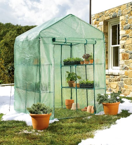 Portable Greenhouse For Patio : Portable steel framed greenhouse with reinforced mesh