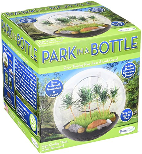 DuneCraft Park in a Bottle Science Kit