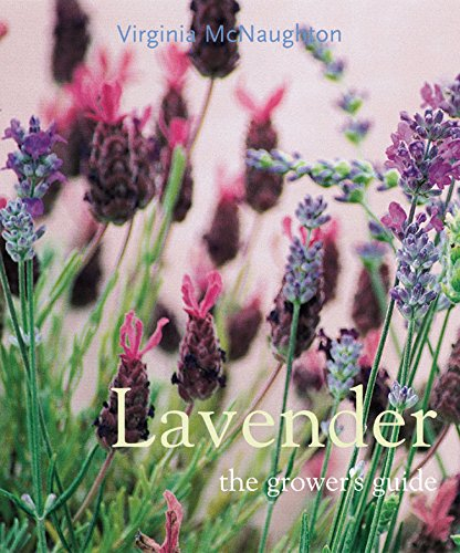 Tube Lavender - Lavender: The Grower's Guide