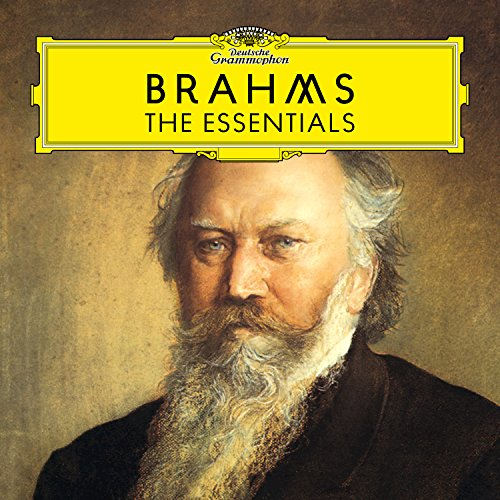 Brahms: Piano Quartet No.1 In G Minor, Op. 25 - 4. Rondo alla Zingarese