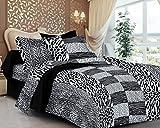 Casa Copenhagen- Basic 144 Thread Count 100% Cotton Double Bedsheet With 2 Pillow Cover- Black & White