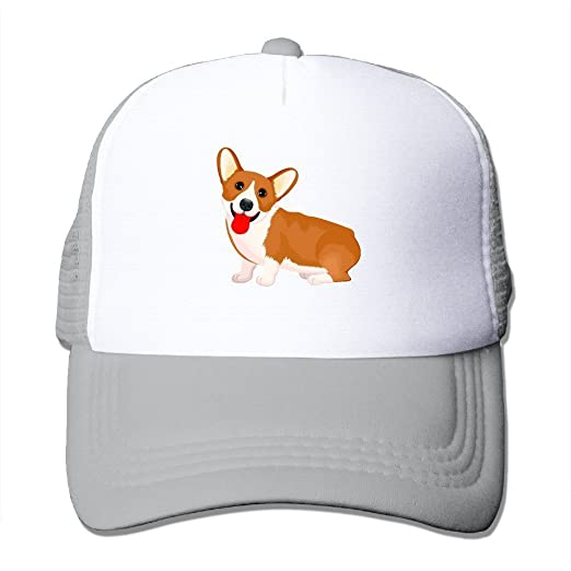 Amazon.com  Pembroke Welsh Corgi Adult Fitted Mesh Hat Baseball Caps Black   Clothing a84ce04735e1