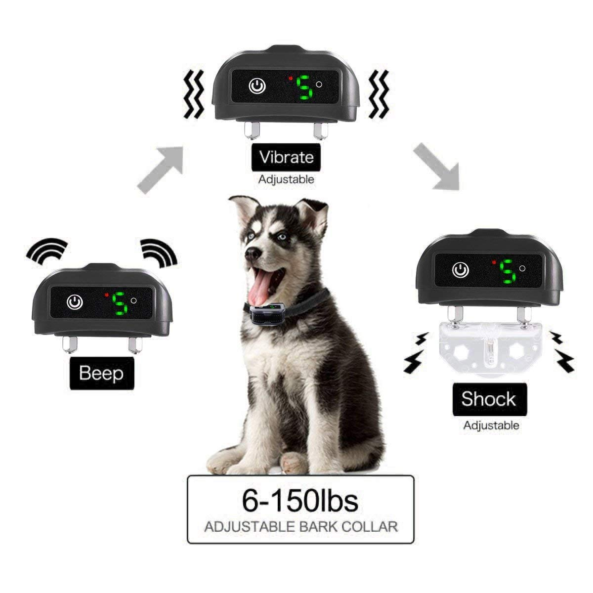Amazon.com: mekuula no Bark Collar, recargable seguro de ...