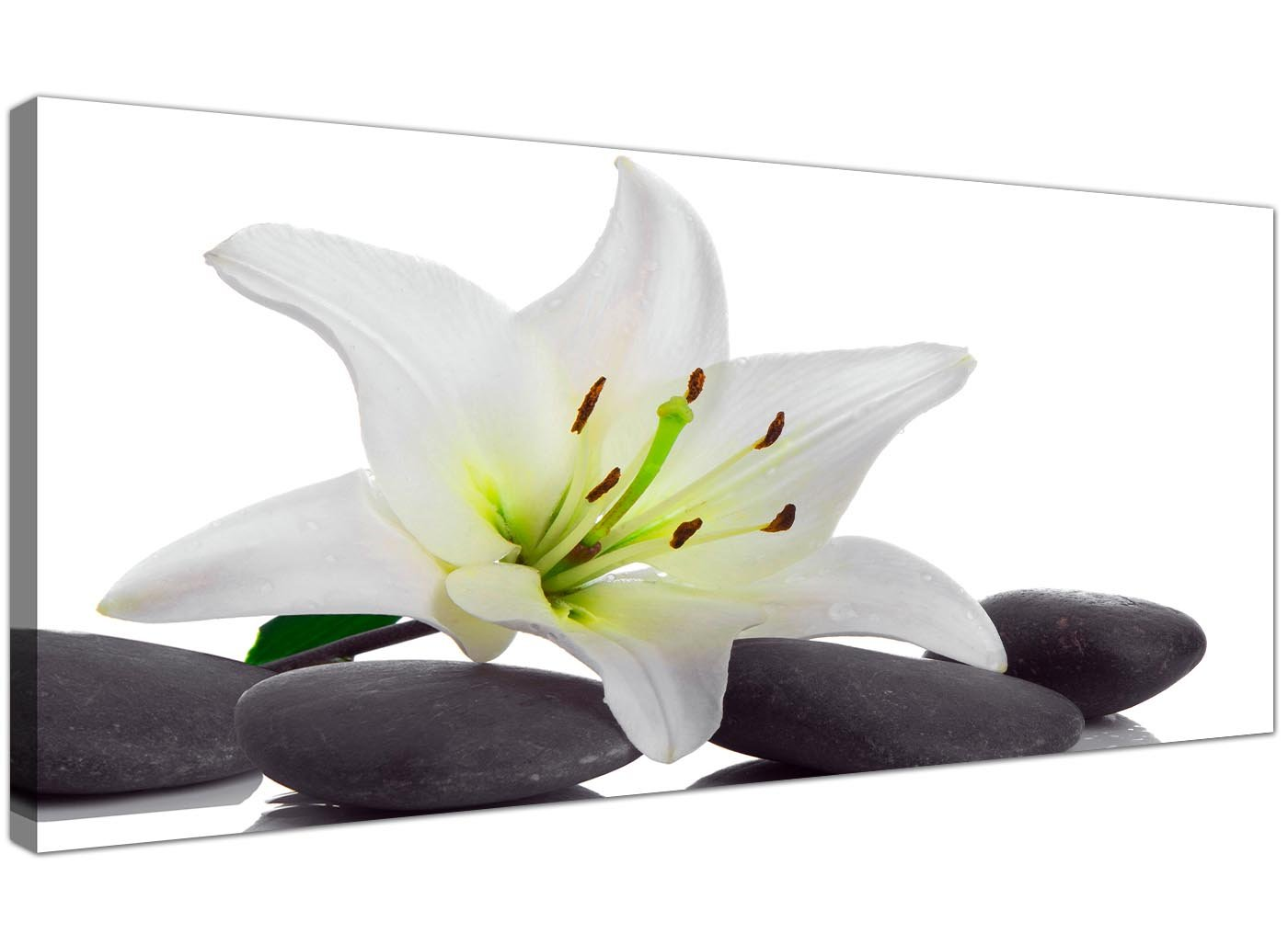 Wallfillers Large Black And White Canvas Prints Of Lily Flowers