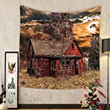 Gzhihine Custom tapestry Scenery Decor Tapestry Scary Horror Movie Themed Abandoned House in Pale Grass Garden Sunset Photo for Bedroom Living Room Dorm 60 W X 40 L Multicolor