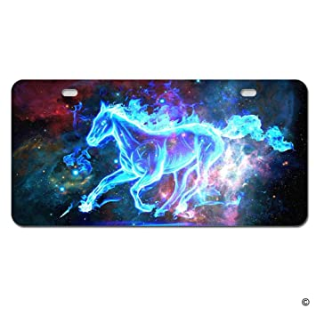 Amazon Com Msmr Funny License Plate Cover With 2 Holes Galaxy Horse