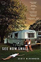 See How Small: A Novel
