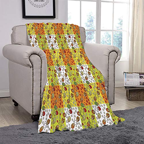SCOCICI Super Soft Throw Blanket/Ladybugs,Cartoon Style Flowers and Beetles Squares Nature Ornamental Summer Season Inspired Decorative,Multicolor/for Couch Bed Sofa for Adults Teen Girls ()
