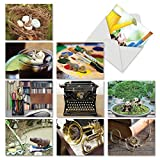 10 All Occasion 'Minimals' Cards Featuring Undersized Animals Playing in Big Surroundings - Note Cards with Envelopes 4 x 5.12 inch, Blank Stationery for Birthdays, Holidays, Thanks M6449OCB