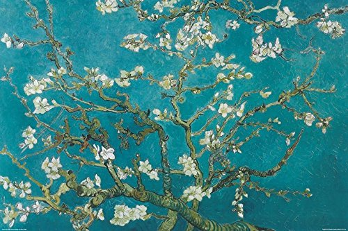 Van Gogh - Almond Blossoms Poster Print