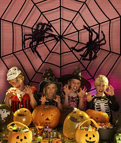 Jollylife Fake Spider Web Black Halloween Decorations,with
