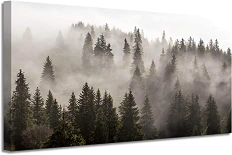 Amazon Com Foggy Forest Canvas Wall Art Landscape Mountain Artwork Photographic Print Pictures For Bedrooms 40 W X 20 H Multi Sized Posters Prints