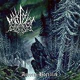 Aurora Borealis by Dark Forest (2012-09-11)