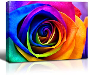 Purple Verbena Art Rainbow Rose Print on Canvas Wall Art Colorful Rose Painting Flower Picture Walls Decoration Floral Pictures Paintings Living Room Home Decor Framed Artwork 12x16 inch,Easy to Hang