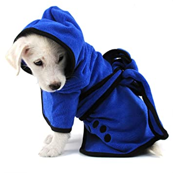 Petit chien vêtu d'un peignoir bleu