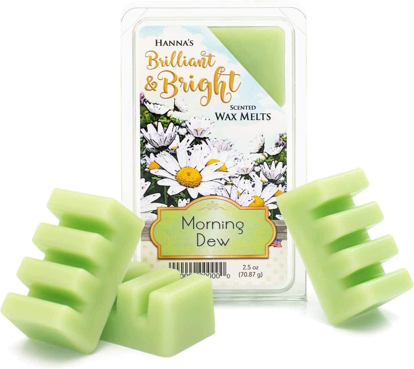 Candlemart by Hanna's Candle Company Morning Dew Scented Wax Melts