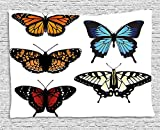 XHFITCLtd Swallowtail Butterfly Tapestry, Five Different Butterflies Colorful Monarch Lady Insect Wings Spring, Wall Hanging for Bedroom Living Room Dorm, 80 W X 60 L Inches, Multicolor