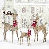 LED Elegant Deer Family, Set of 3