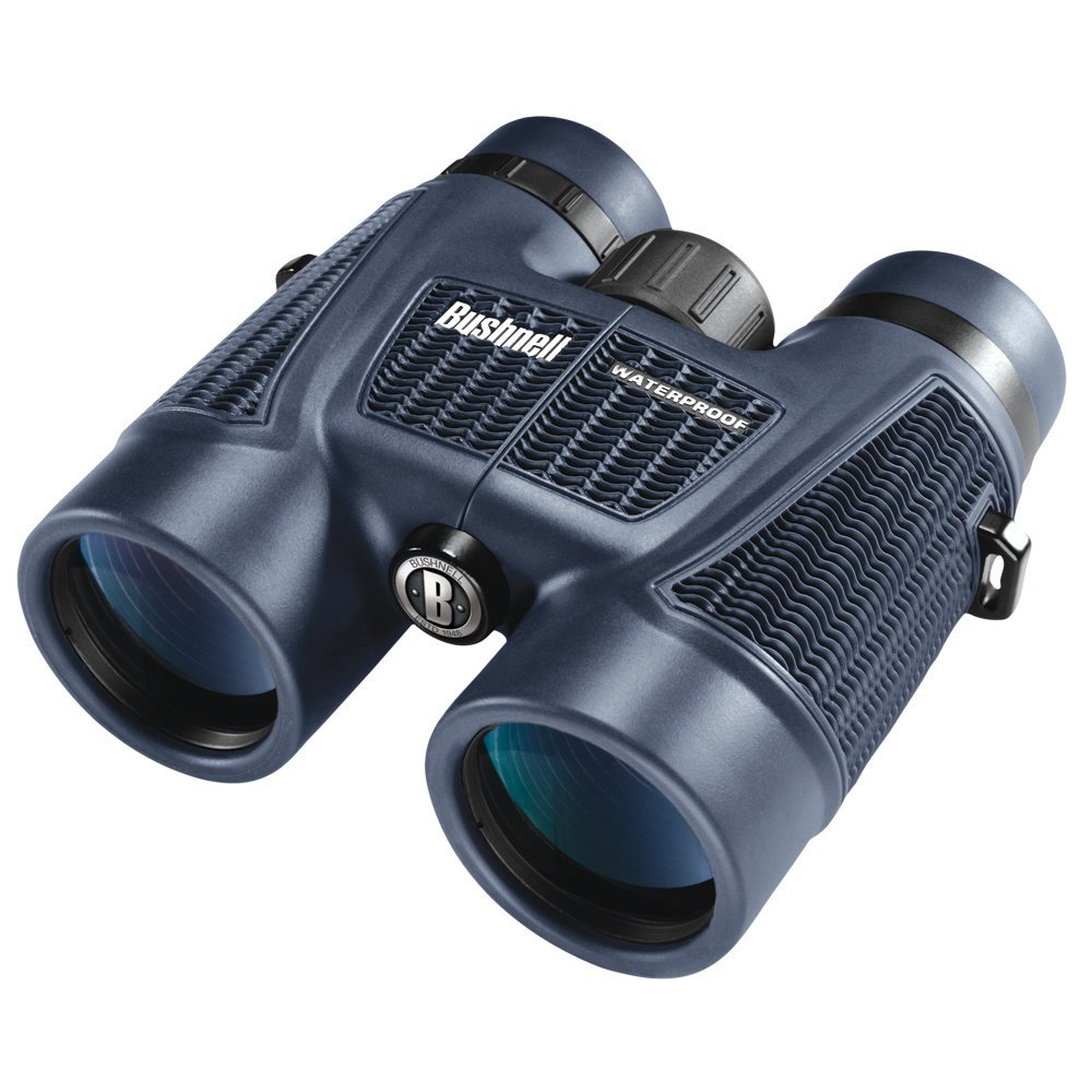 Bushnell H2O Waterproof/Fogproof Roof Prism Binocular, 8 x 42-mm, Black by Bushnell