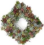 """Square Succulent Living Wreath - 13"""""""