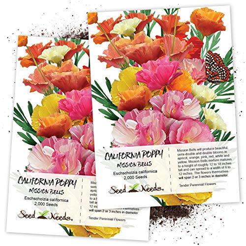 - Seed Needs, Mission Bells California Poppy (Eschscholzia californica) Twin Pack of 2,000 Seeds Each