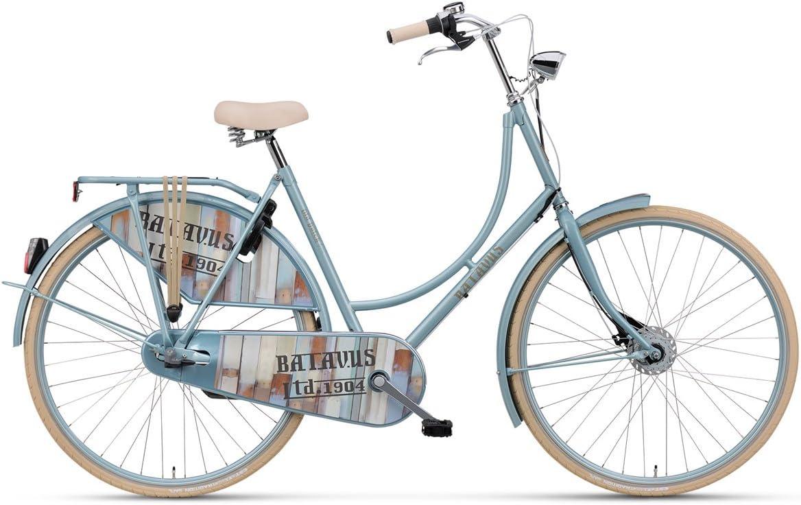 Batavus Omafiets - Bicicleta Holandesa para Mujer (28