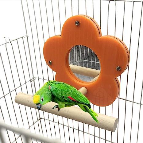 Legendog Loro Perca Pájaro Creativo Stand Perch Pájaro Jaula De ...