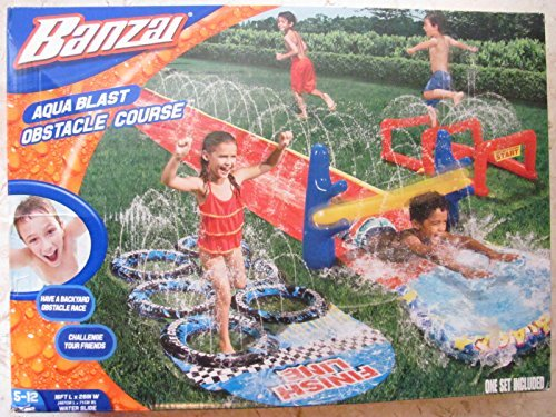 Outdoor Water Play (Banzai Aqua Blast Obstacle Course by Banzi)