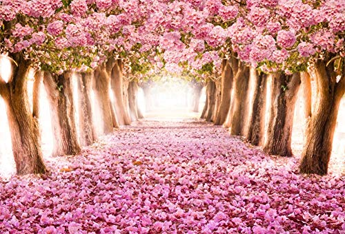 Yeele 5x3ft Cherry Park Backdrop for Photography Spring Romantic Pink Flower Trees Falling Petal Tunnel Background Pink Road Pathway Nature Landscape Kids Girl Photo Booth Shoot Vinyl Studio -