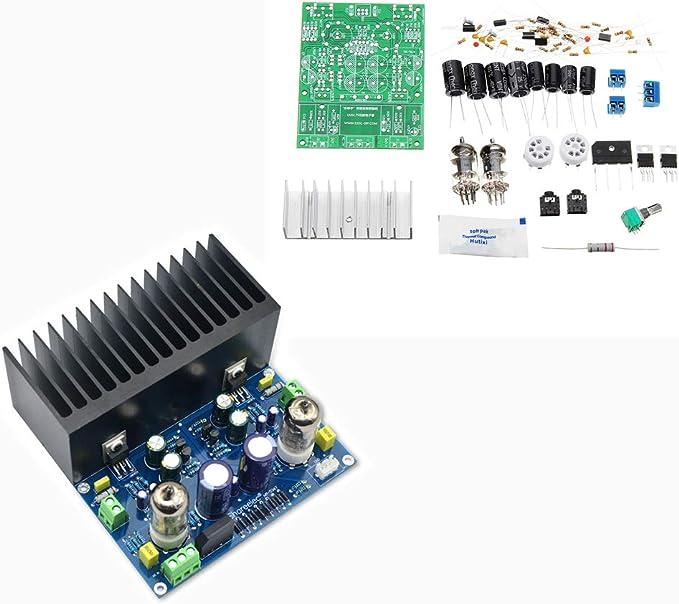 ILS - DIY LM1875 Tubo vacío Kit Amplificador cálculos biliares vesícula biliar Kit Módulo Amplificador: Amazon.es: Electrónica