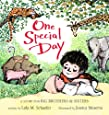 One Special Day (A Story for Big Brothers and Sisters)