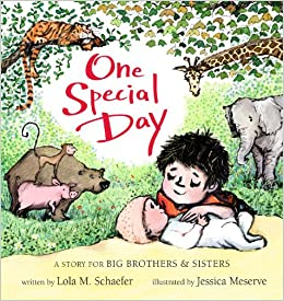 One Special Day: A Story for Big Brothers & Sisters: Amazon co uk