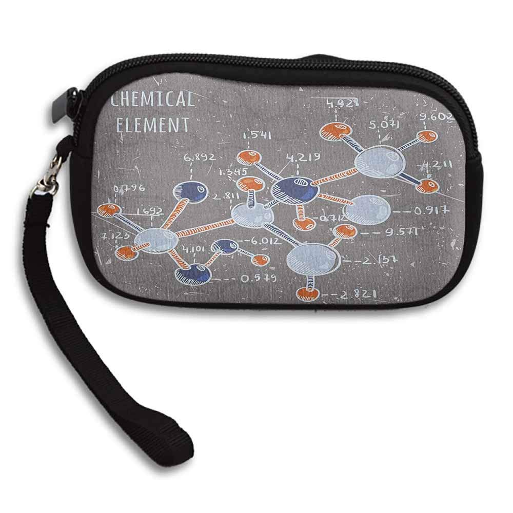 Grunge Zipper Small Purse Wallets Chemistry Laboratory with Display Formula Science Graphic Design Print W 5.9x L 3.7 Purse For Women Girls