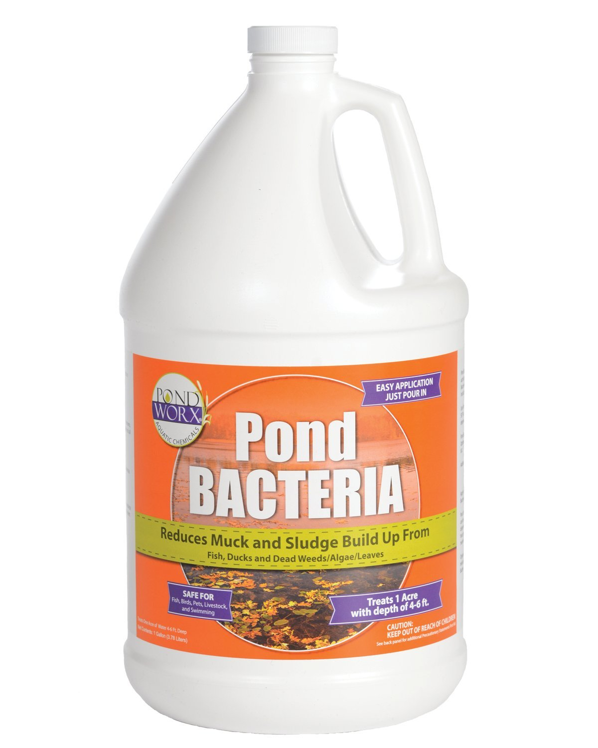 PondWorx Pond Bacteria - Formulated for Large Ponds, Water Features and Safe for Koi - 1 Gallon by PondWorx (Image #1)