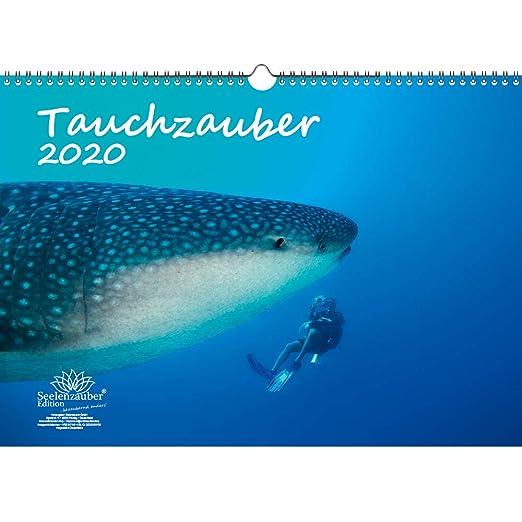 Calendario de buceo DIN A3, 2020, submarino y buceo, set de regalo ...