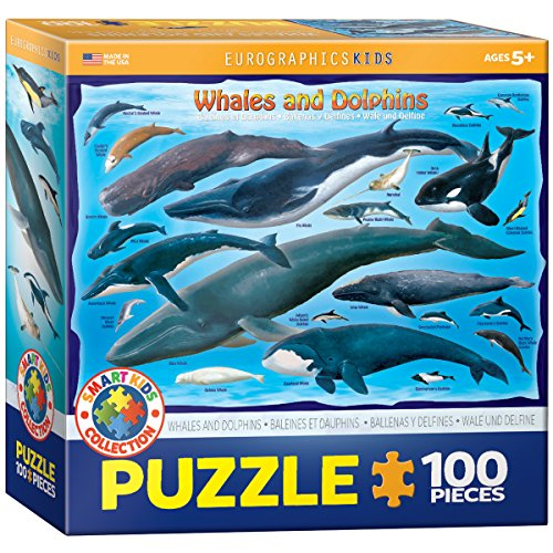 Whales & Dolphins 100 Piece Jigsaw Puzzle (Jigsaw Whale)