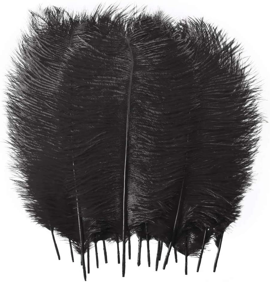 Boshen 8-10 inch Real Natural Ostrich Feather Plume for Wedding Halloween Party Xmas Centerpiecs Home Decor DIY Craft Pack of 10